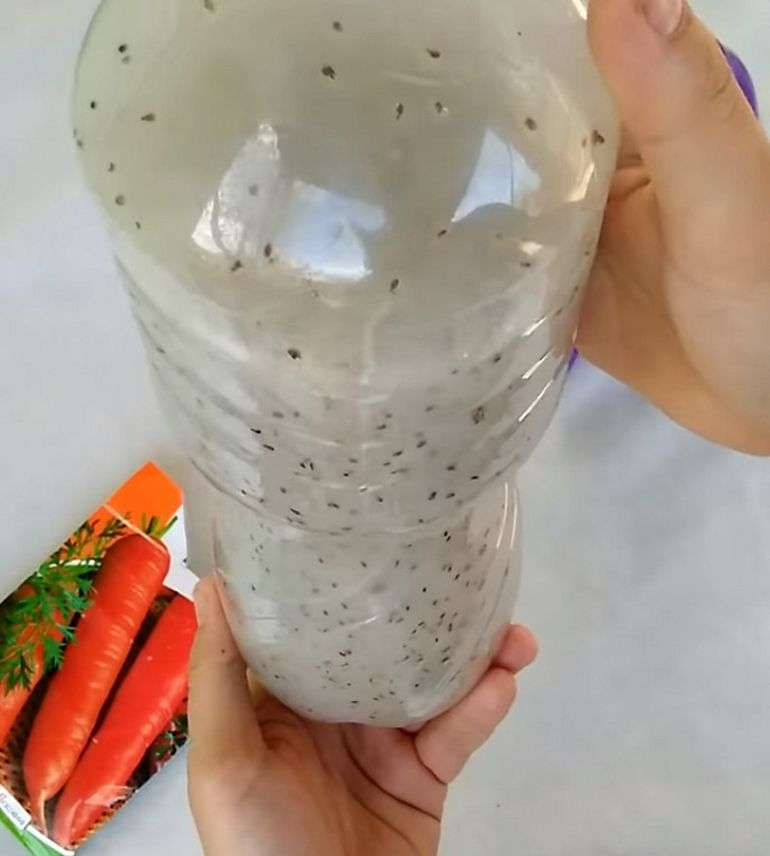Семена в клейстере