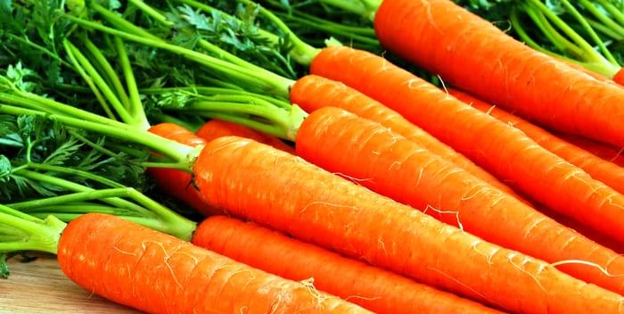 Посадка гранулированной моркови