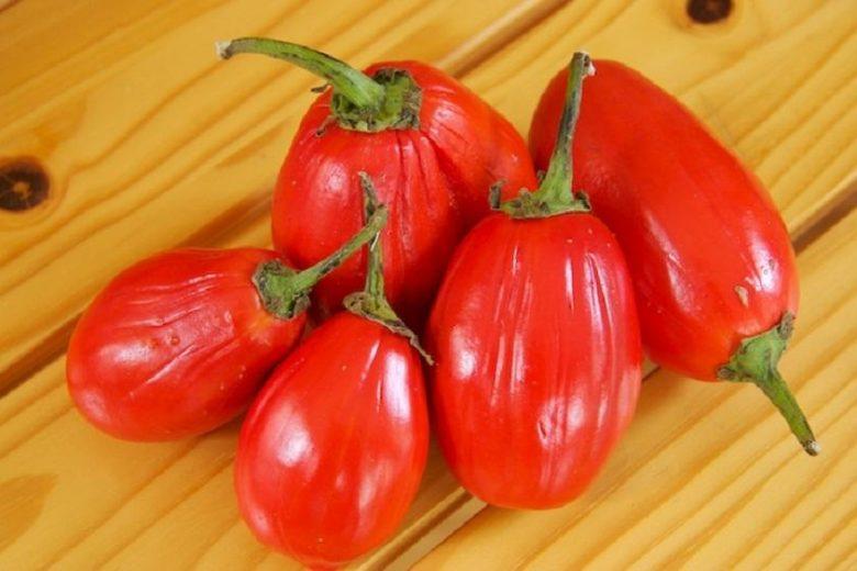 Баклажан или помидор?