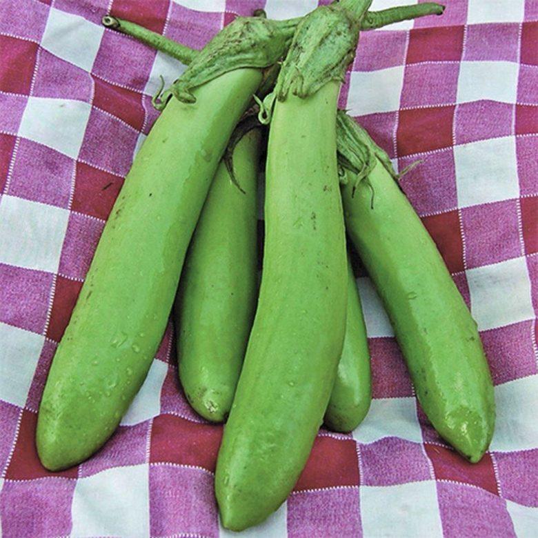 Необычный зеленый плод