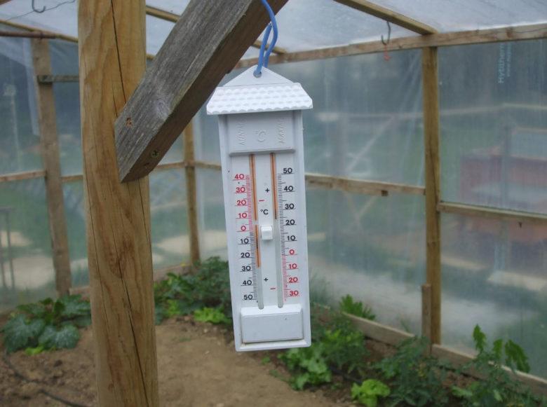 Термометр в теплице