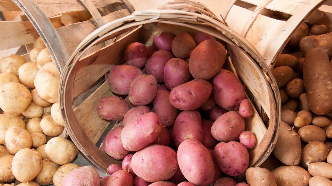Как хранить картошку на кухне