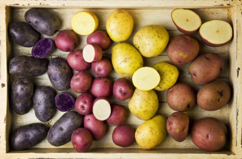 Подготовленный к хранению картофель