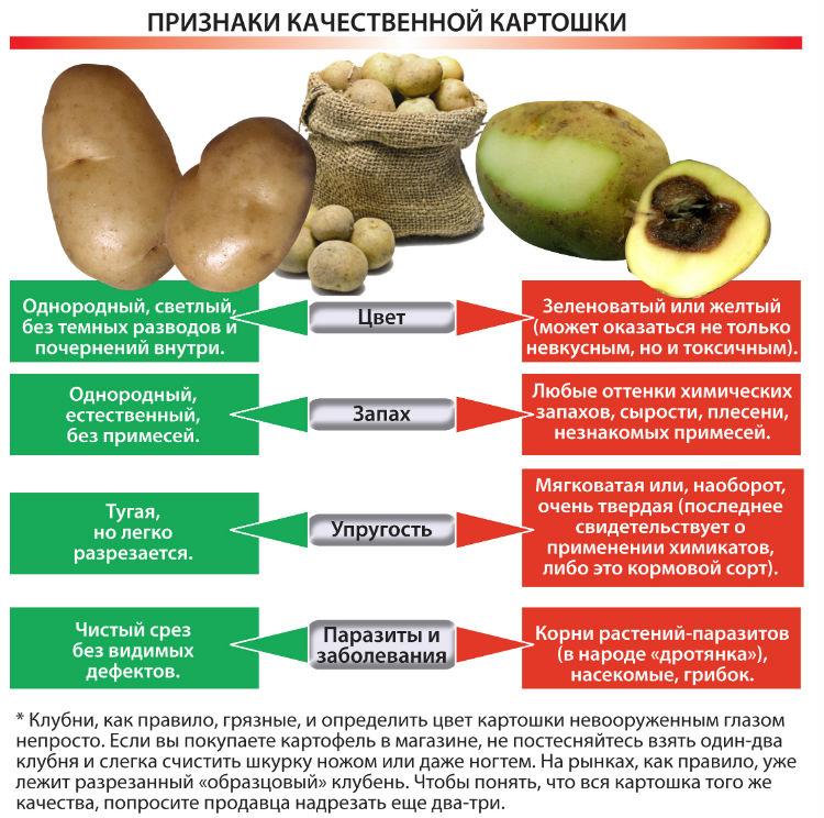 Выбирайте качественные овощи