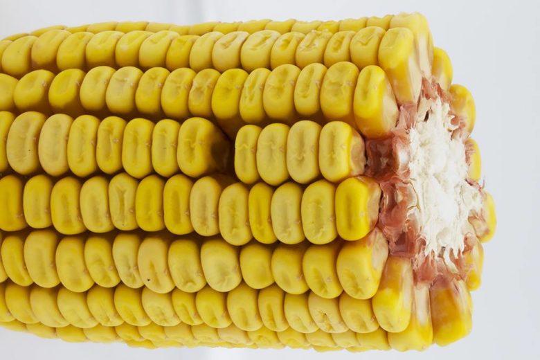 Зубовидный вид кукурузы