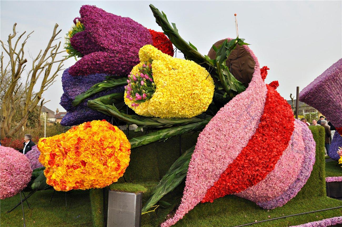 Фестиваль цветов в Амстердаме