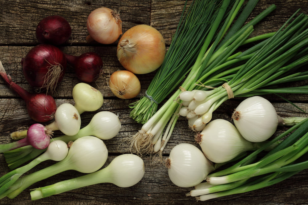 Разновидности зеленого лука