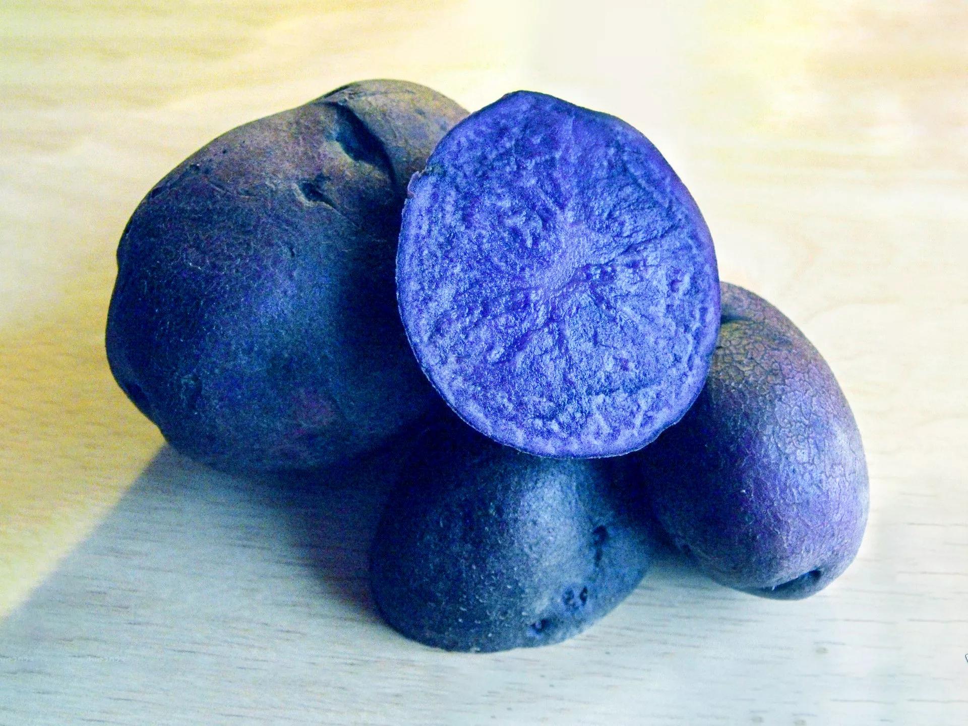 картофель синие сорта описание фото отзывы всегда обговаривается клиентками