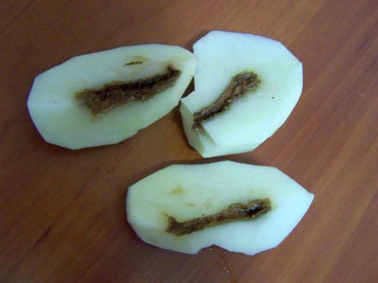 Зараженные болезнью клубни в пищу лучше не употреблять.