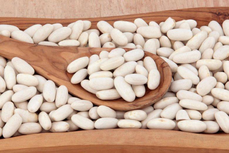 Фасоль белая польза и вред- состав, калорийность, как готовить